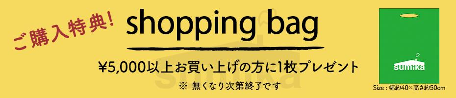 ショッピングバッグプレゼント